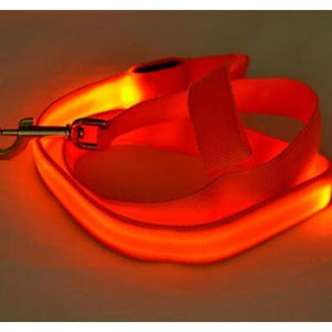Nylon LED Light Up Dog Leash For Night Safety - thediggitydogstore.com