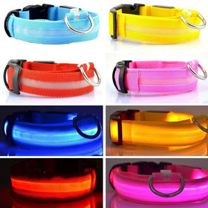Nylon Light Up Collar In Great Colors - thediggitydogstore.com