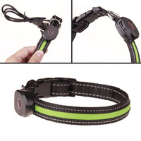Led Dog Collar USB Rechargeable Glowing Pet Dog Collar Light Flashing Light Up Dog Necklace for Dogs Night Walking Safety - thediggitydogstore.com