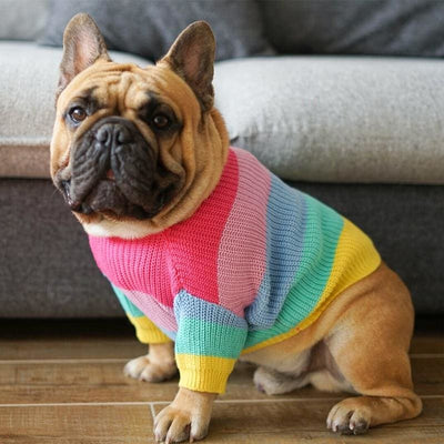 Rainbow Sweater for Dogs, So Pretty! - thediggitydogstore.com