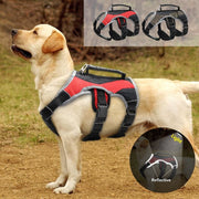 Reflective Dog Harness For Large Dogs With Handle - thediggitydogstore.com