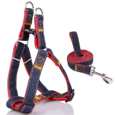 Rugged Vest Harnesses & Leash Set S-XL - thediggitydogstore.com