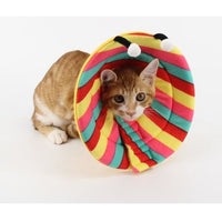 Stop Biting And Chewing With An Elizabethan Collar In Fun Shapes - thediggitydogstore.com