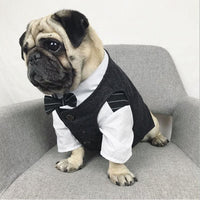 Wedding Costume For French Bulldogs, Pug Vest Suit Dogs XS-XXL - thediggitydogstore.com