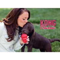 XS-XXL KONG Classic Dog Toy with Your Choice of Dog Treat Toy - thediggitydogstore.com