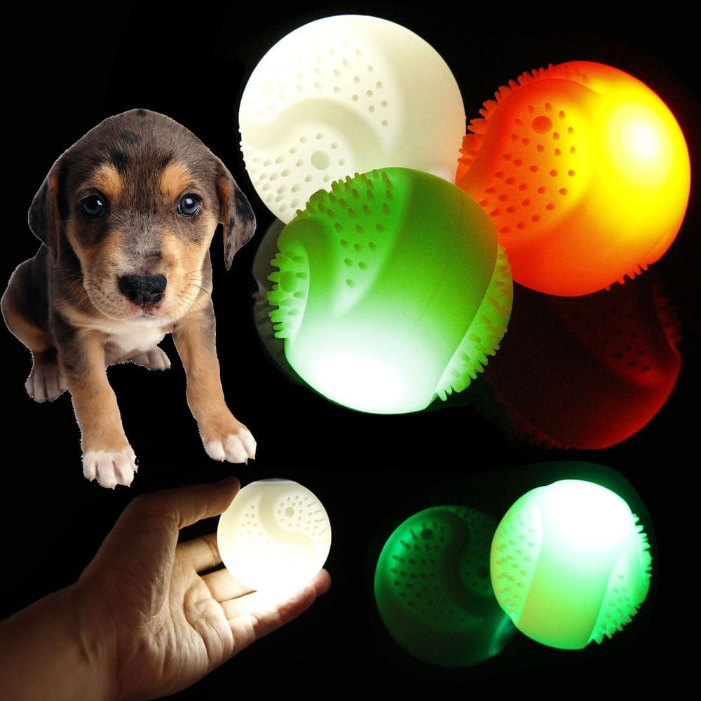 a dog with a green light