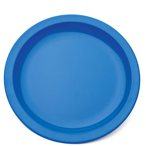 Polycarbonate Narrow Rimmed Plate