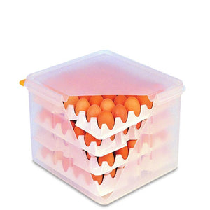 Araven Egg Container with Egg Trays & Lid 2/3 GN