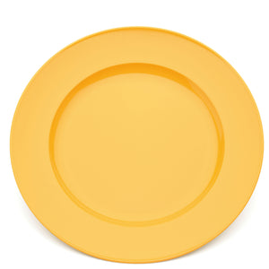 Polycarbonate Dinner Plate 240mm