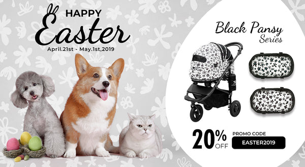 EASTER SPECIAL OFEER 20% Off, Black Pansy Series