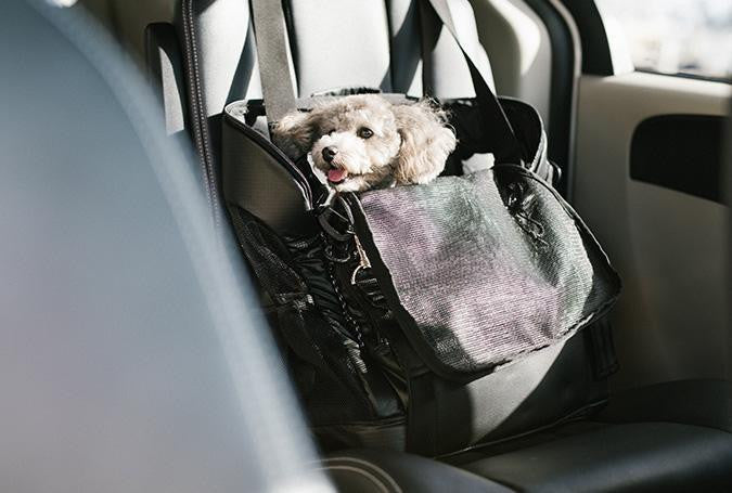3 Way Back Pack Carrier with dog ISOFIX