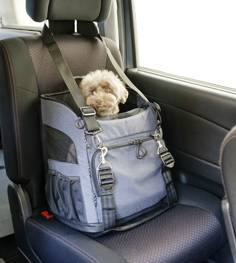 ISOFIX BELT with 3 Way Back Pack Carrier