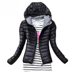 2017 Autumn Winter Women Basic Jacket Coat Female Slim Hooded Brand Cotton Coats Casual Black Jackets-geekbuyig