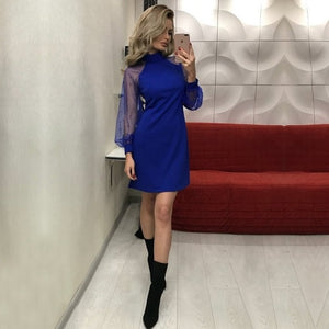 Elegant Women Dress 2018 Autumn Applique Contrast Mesh Sleeve Form Fitting Solid Dress Long Sleeve A Line Mini Party Dress-geekbuyig