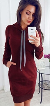 2017 New Women Autumn Winter Dresses Long Sleeve O-neck Pullover Knit Bodycon Lace Slim Mini Dress Knitwear-geekbuyig