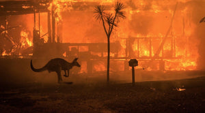 Australia Fires 2019-  Climate change increases the risk of wildfires.