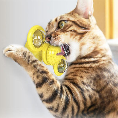 [Last Day Promotion, 50% OFF] Cat Spinner - IlifeGadgets