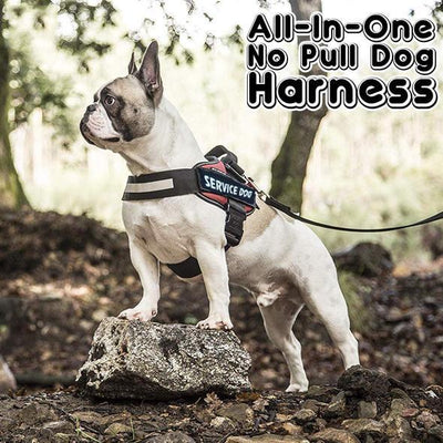 【Buy 2 Get Extra 10% OFF+FREE SHIPPING】2019-New All-In-One No Pull Dog Harness
