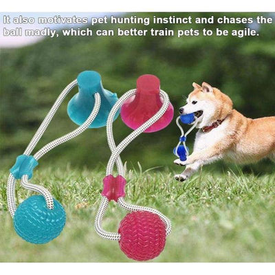 【Last Day Promotion, 60% OFF】- Flexible Dog Molar Bite Toy - absoluteyours