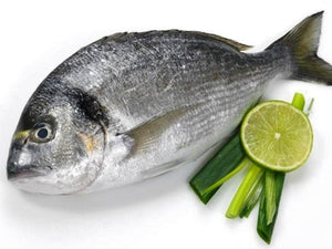 Fresh Sea Bream Fish Per KG