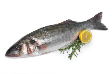 Fresh Sea Bass Fish Per KG