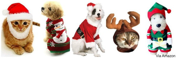dog-cat-christmas-sweaters-hats