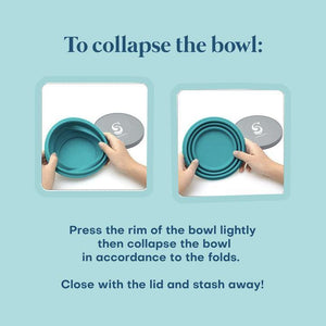 Seastainable Collapsible Silicon Bowls - TroveofGaia