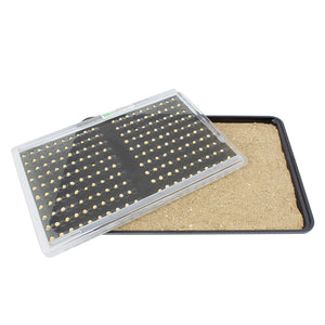 Seed Placement Tray for Cafeteria Sized Trays