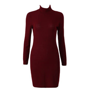 Women Casual  Knit Mini Sweater Dress