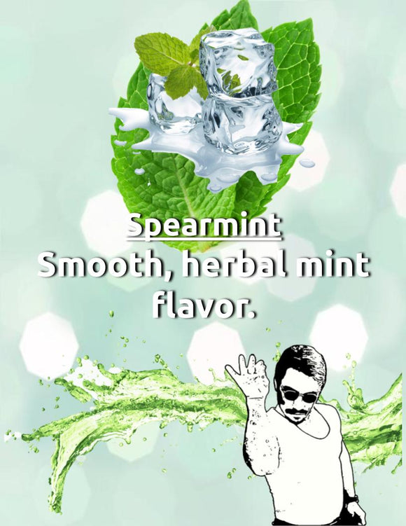 Spearmint Nic Salt House Juice