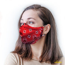 Load image into Gallery viewer, Red Bandana Protective Reusable Face Mask