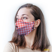Load image into Gallery viewer, Red Gingham Protective Reusable Face Mask