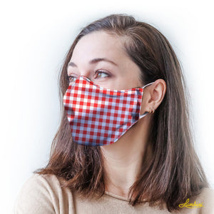 Red Gingham Protective Reusable Face Mask