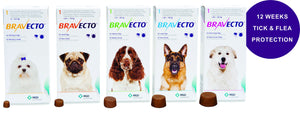 Bravecto tick and flea treatment chewable tablet for dogs - The Vet Store Online