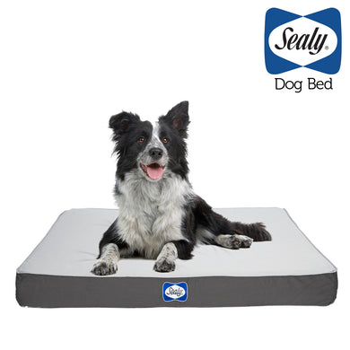 Sealy DEFENDER IXP5 certified water resistant orthopedic dog bed