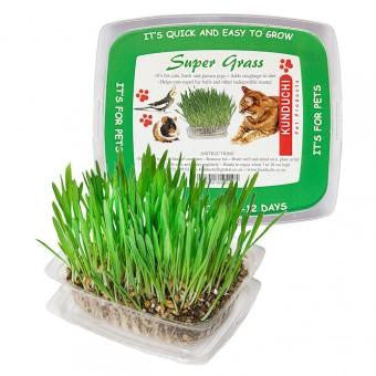 Super Grass, Kunduchi - The Vet Store Online