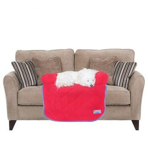 Bed Couch Potato - The Vet Store Online