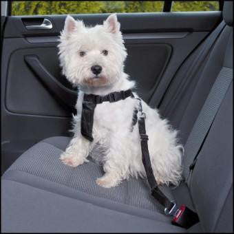 Trixie Car Safety Harness - The Vet Store Online