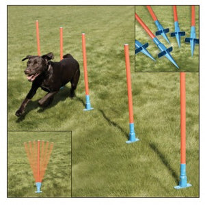 Rosewood Agility Slalom - The Vet Store Online