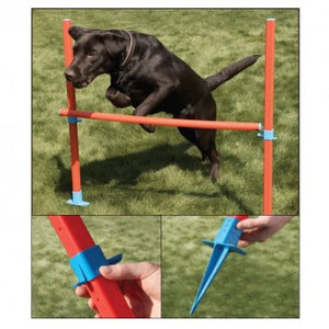 Rosewood Agility Hurdle - The Vet Store Online