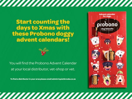 Probono Advent Calendar