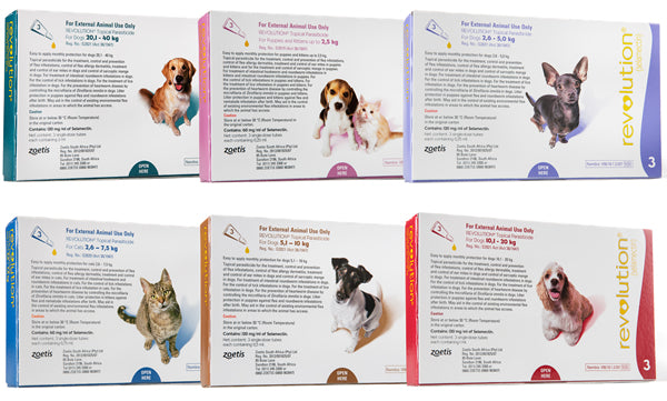 Revolution (Selamectin) Spot on for dogs and cats - 3 pipettes per pack - The Vet Store Online
