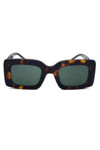 SHEVOKE ZINGARO CANCUN TORTOISESHELL MOLLY KING
