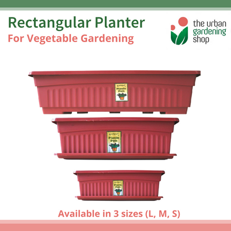 RAMGO RECTANGULAR PLANTERS for Home Vegetable Gardening