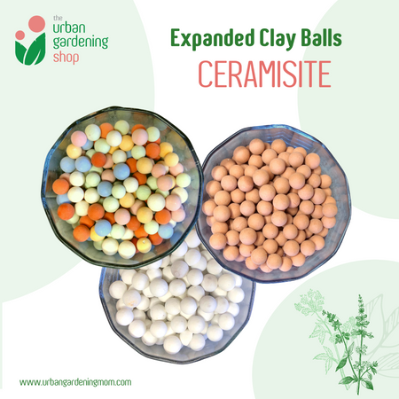 COLORED CERAMSITE  for Gardening –  Expanded Ceramic Clay Balls for Horticulture (Plants & Garden)
