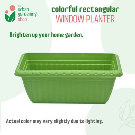 FELICITY  Herbs and Veggie Planter - Excellent for Indoor and Outdoor Potted Plants and Patio Gardens