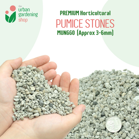 PUMICE Rocks and Pebbles for Gardening Purposes