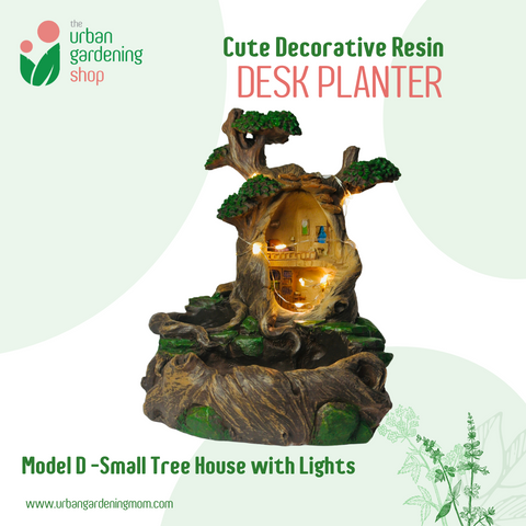 DECORATIVE DESKTOP PLANTERS  Ideal For Cactus and Succulents