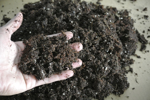 Soil-Less Potting Mix For Plants And Seedlings