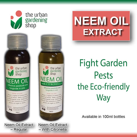 Citronella-infused NEEM OIL EXTRACT for Gardening Purposes